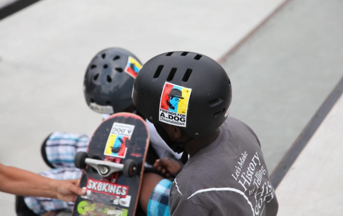 A Dog Skateboarding Helmet