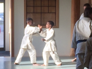 Children participate in Aikido